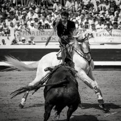 Andy Cartagena Dax 2019©William LUCAS