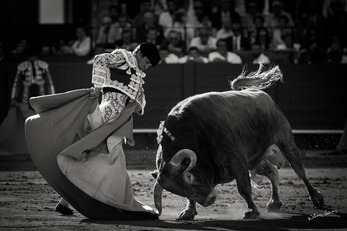 El Juli Séville 2019©William LUCAS-2