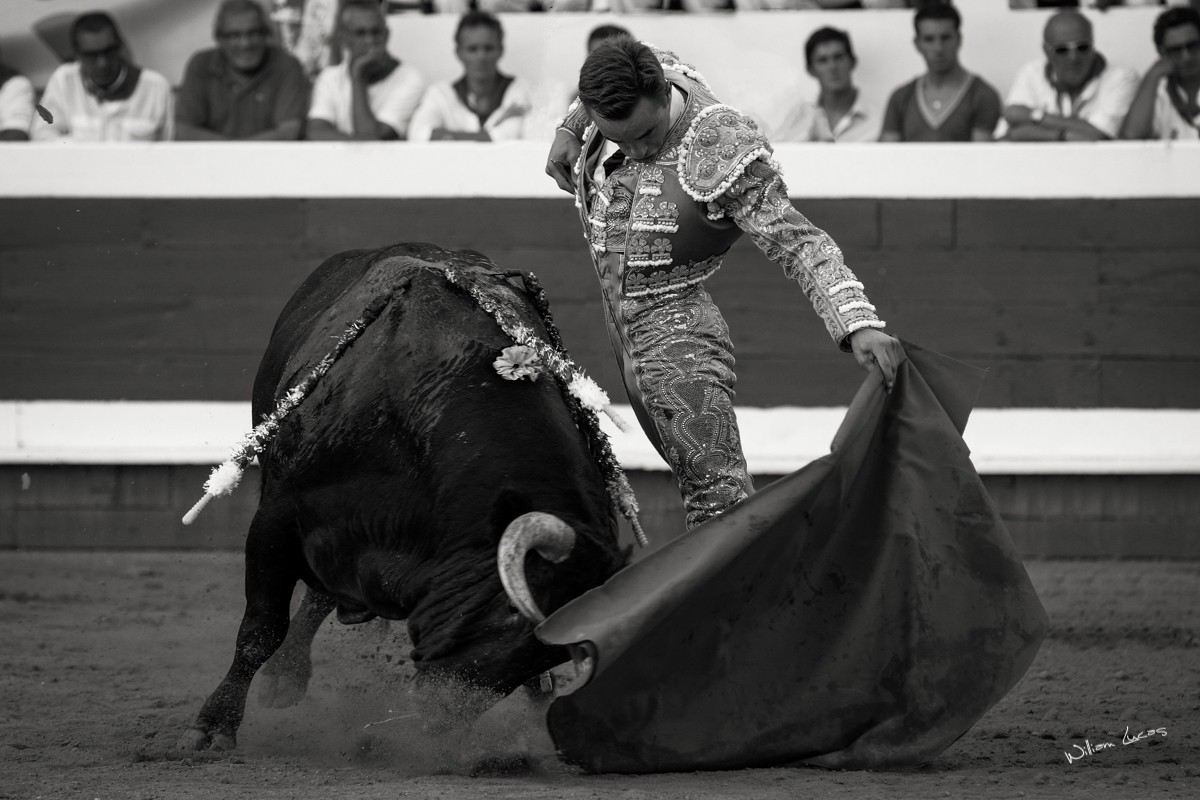 Juan Bautista Dax 2012©William LUCAS