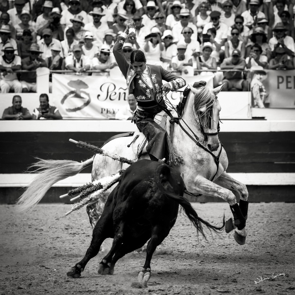 Lea Vicens Dax 2016©William LUCAS