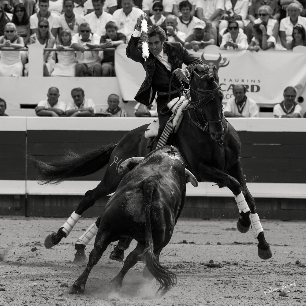 Mendoza Dax 2012©William LUCAS