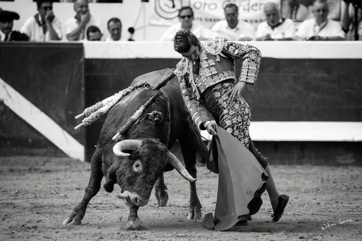 Morante de la Puebla Dax 2014©William LUCAS