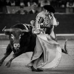 Morante de la Puebla Saragosse 2016©William LUCAS