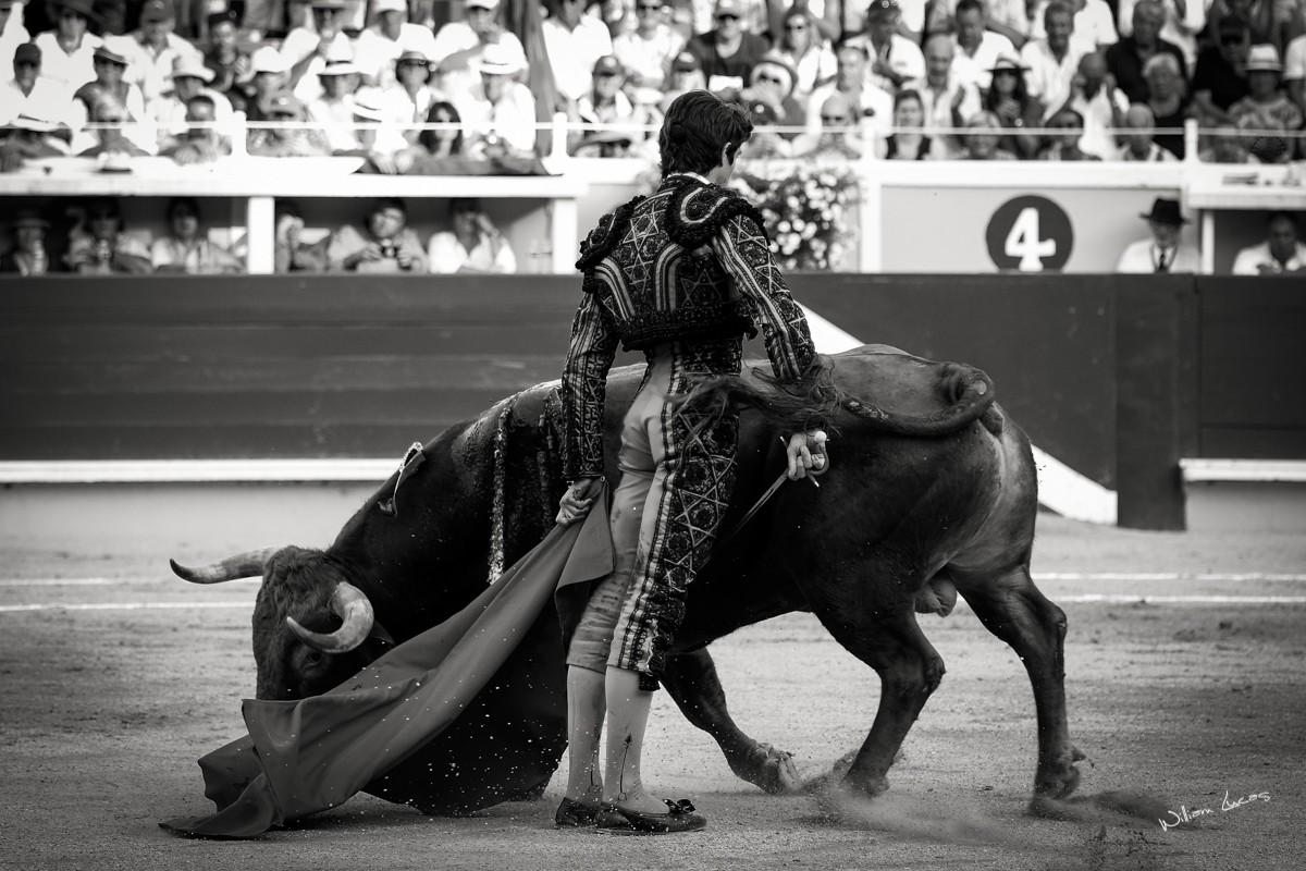 Sebastien Castella Bayonne 2016©William LUCAS