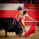 6 toro pablo aguado 2019 william lucas 6