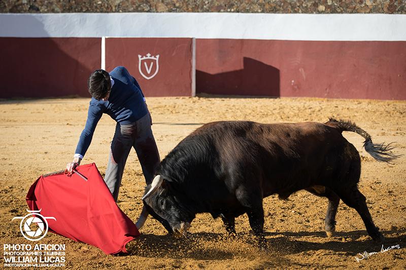 Tentadero juan pedro domecq con alvaro lorenzo 2018 william lucas 39