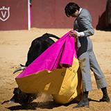 Tentadero juan pedro domecq con andres roca rey 2018 william lucas 22