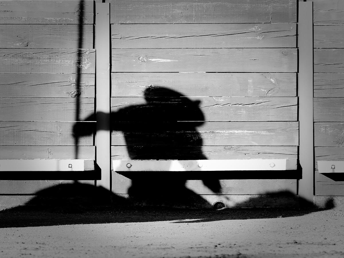 Sombra piquero Captieux 2016©William LUCAS